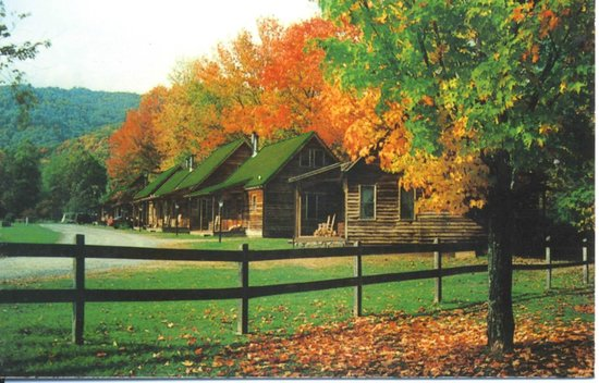 Creekwood Village Resort : Cabins in the fall