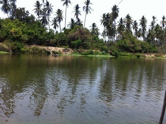 Laguna de Coyuca: Añade un título