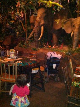 Rainforest Cafe: Elephants