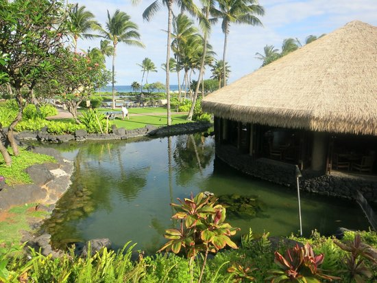 Grand Hyatt Kauai Resort & Spa: Tidepools Restaurant