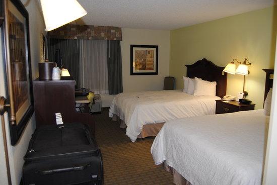 Hampton Inn Orlando/Lake Buena Vista: Room View # 2