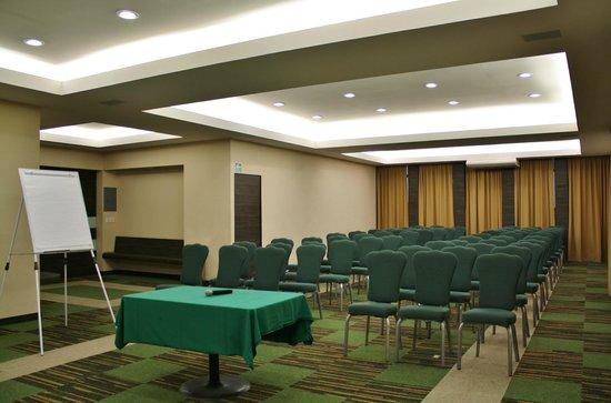 Hotel Del Angel: Salin Terraza