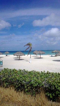 Hyatt Regency Aruba Resort and Casino: Beaches