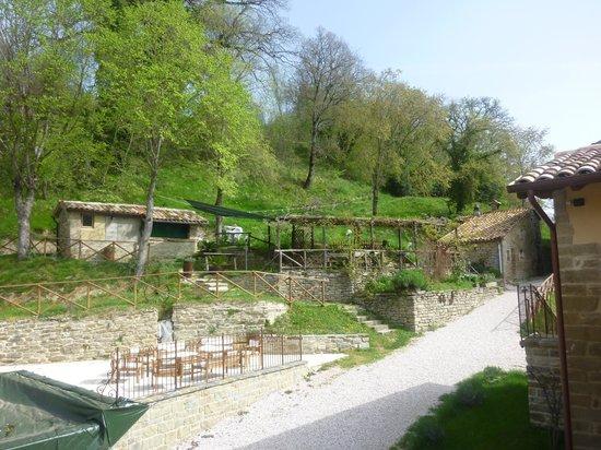 Agriturismo Ca Montioni: ZONA RELAX