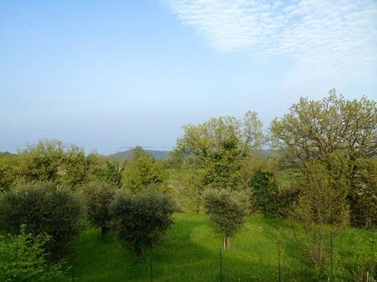 Garda Country House: vista sul lago