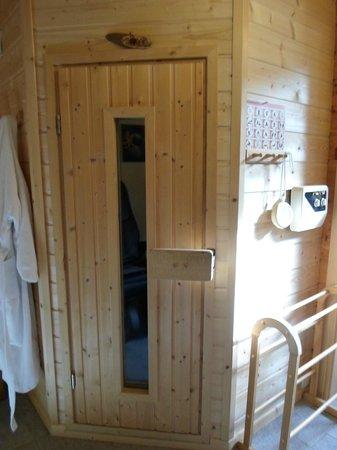 Chalet l'Epinette : Espace Bien-Etre, le Sauna