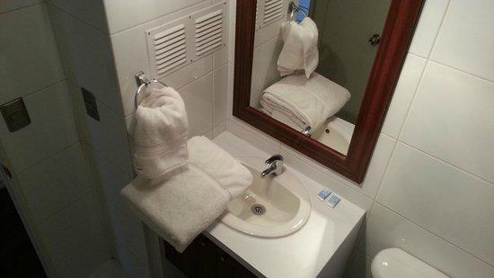 Apart Urbano Bellas Artes: Lavatorio del baño