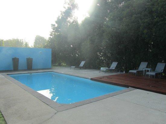 Bloomestate: La piscina
