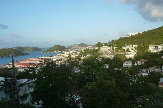 The Green Iguana Hotel : Nice view from room