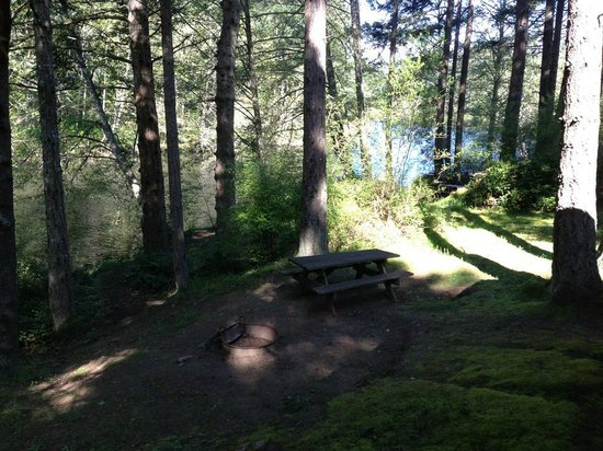 Lakedale Resort at Three Lakes: Private picnic area, with fire pit, next to the lake