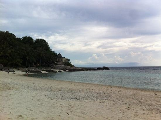 Nangyuan Island Dive Resort : เพิ่มคำอธิบาย