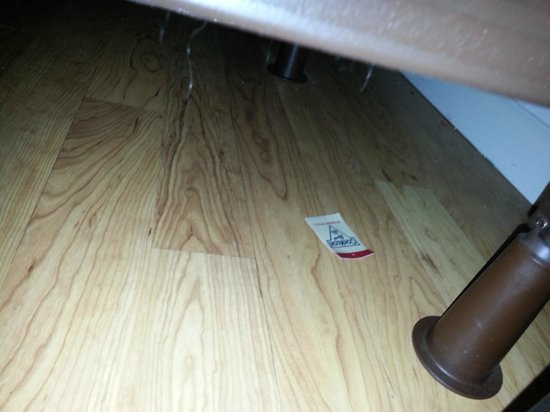 DoubleTree by Hilton Hotel Buffalo - Amherst: Hair balls, dust and card? under the bed