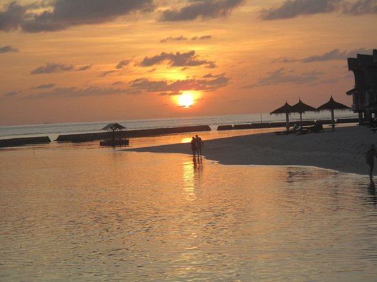Ellaidhoo Maldives by Cinnamon: Beach sunset