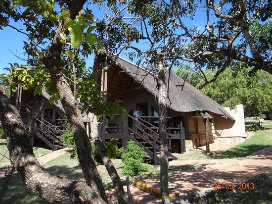 Bongani Mountain Lodge: bongani lodge