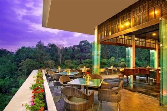https://media-cdn.tripadvisor.com/media/photo-s/03/d6/ca/a1/the-restaurant-padma.jpg
