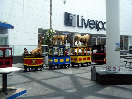 Plaza Las Americas : cute train that takes kids on a little ride around
