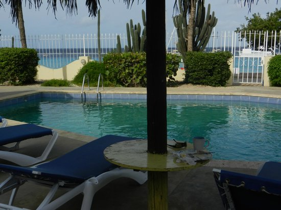 Bonaire Oceanfront Apartments: pool side lower level