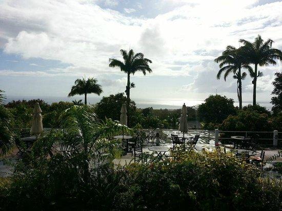 蒙彼利埃植物園沙灘飯店照片