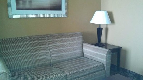 Holiday Inn Express Hotel & Suites Foley: couch