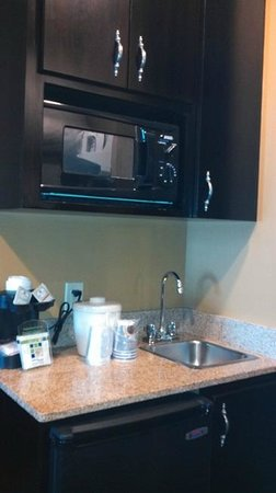 Holiday Inn Express Hotel & Suites Foley: microwave and fridge in each room