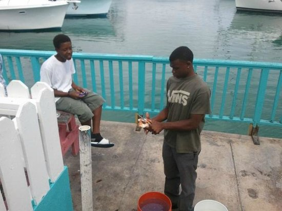 Da Conch Man : Big Daddy's helpers shelling conch