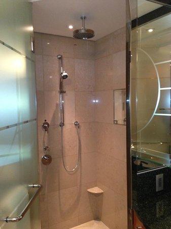 The Ritz-Carlton, Tokyo: Shower