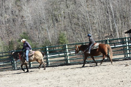 Ridin-Hy Ranch Resort: Riding Lesson