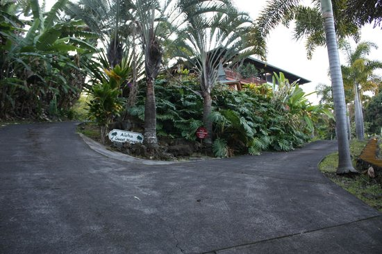 Aloha Guest House: View from the driveway leading into the parking area