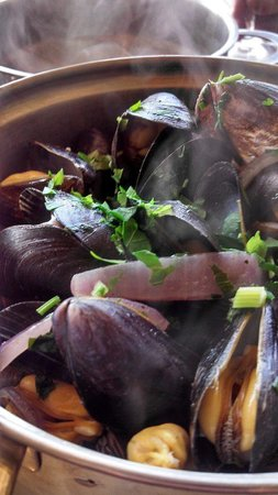South Beach Bar & Grill: Our Mussels dish
