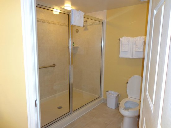 Marriott's Villas at Doral: Shower
