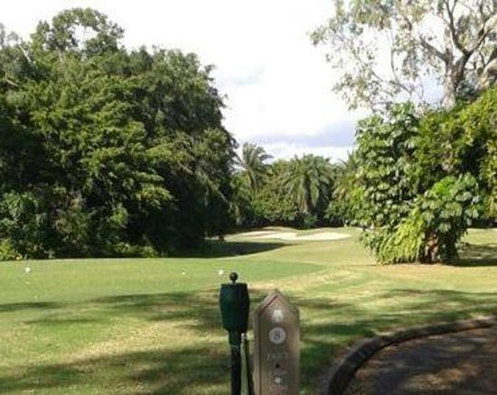 Mirage Country Club: Eigth Hole