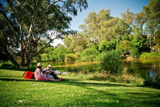 Cowra Visitor Information Centre: watching the Lachlan roll by