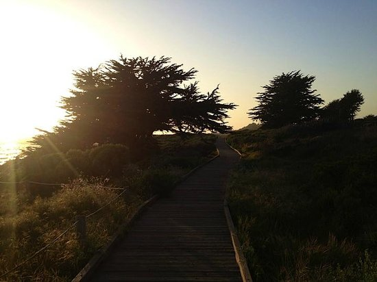 Cambria Landing Inn & Suites: Walking trail along the beach.