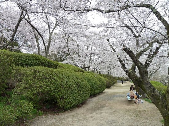 Okayama Koraku Hotel: Handayama Garden, Okayama