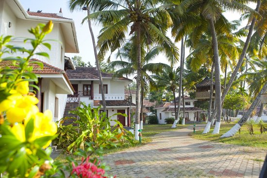 The World Backwaters: Resort Exterior
