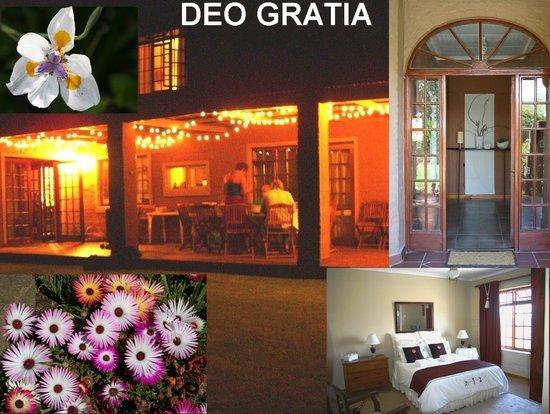 Deo Gratia Guesthouse Durbanville