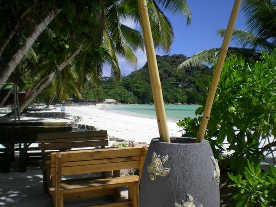 Le Duc de Praslin: La plage aux abords du café des arts