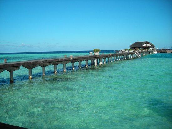 Olhuveli Beach Spa Maldives Dal Ristorante