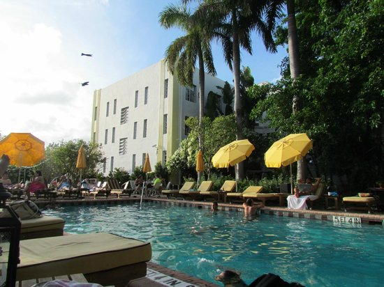 Freehand Miami: Pileta climatizada