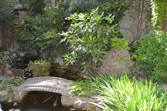 Jardin zen picture of business ryokan maizuru adachi for Grand jardin zen