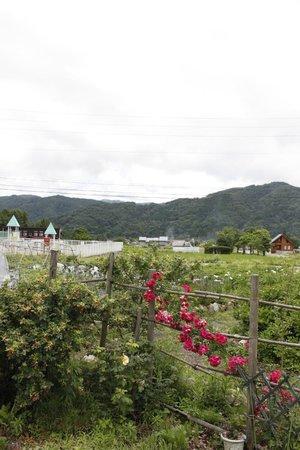 Hotel Saito: 周りの景色