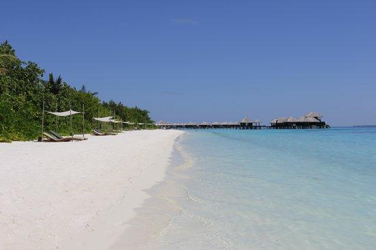 Coco Bodu Hithi: Plage Island Villa 320 à 333