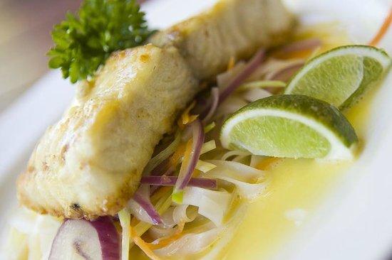 Kacy's Restaurant: Wild caught Barramundi fresh from the Gulf