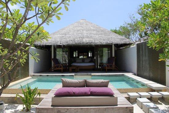 Coco Bodu Hithi: Piscine Island Villa