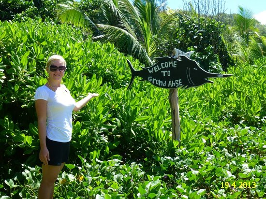 Grand Anse: ON THE WAY TO THE BEACH OF PETITE ANSE AND GRANSE ANSE, IN APRIL 2013.