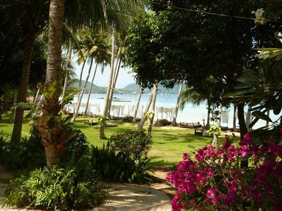 โรงแรมเกาะเต่า คาบาน่า: Private Beach