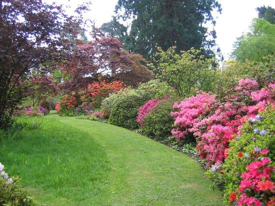 Ramster Gardens: Azalea Garden