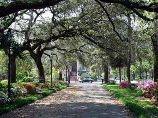 Amethyst Garden: The parks are stunning!!