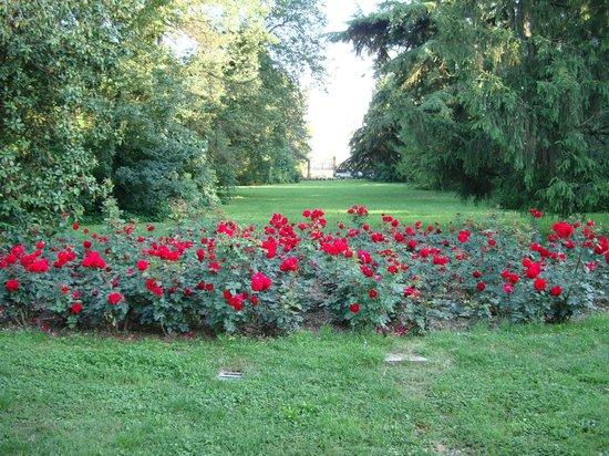 Giardino all 39 entrata con rose rosse foto di villa la - Giardino con rose ...