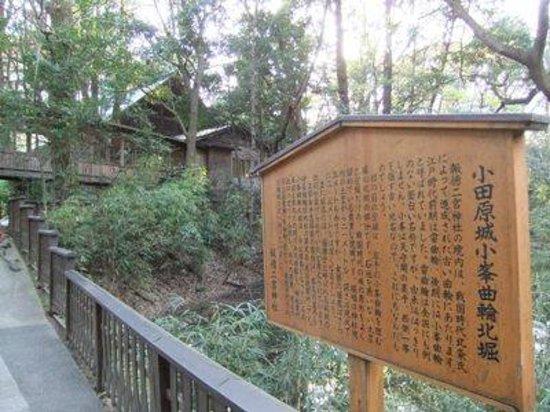 Odawara Castle Park: 小田原城址公園08